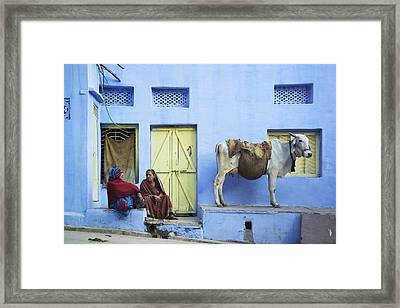 Two Women And A Cow Sitting Outside Of Framed Print by Alan Williams