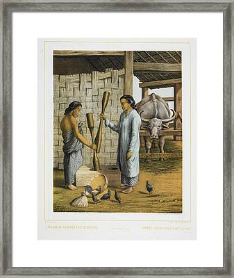 Two Women Of Java Framed Print by British Library