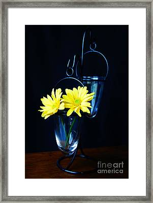 Two Yellow Daisies Framed Print by Kerri Mortenson