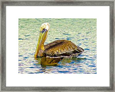 Two's Company Framed Print by Brian D Meredith
