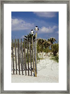 Two's Company Framed Print