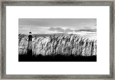 Tybee Lighthouse One Framed Print