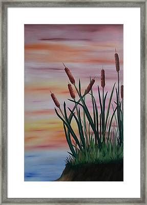 Typha Framed Print by Valorie Cross
