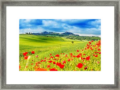 Typical Landscape Of Tuscany Framed Print by Gehringj