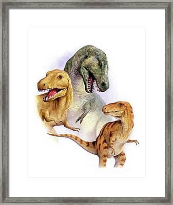 Tyrannosaurs Framed Print by Deagostini/uig