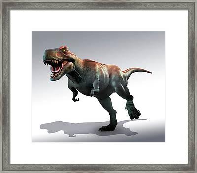 Tyrannosaurus Rex Artwork Framed Print