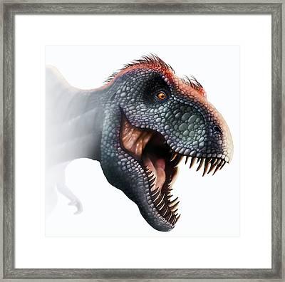 Tyrannosaurus Rex Head Framed Print