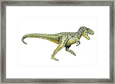 Tyrannosaurus Rex Framed Print by Michael Vigliotti
