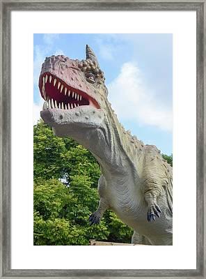 Tyrannosaurus Rex (t. Rex) Framed Print
