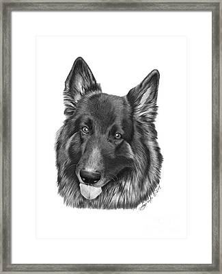 Framed Print featuring the drawing Tyson -038 by Abbey Noelle