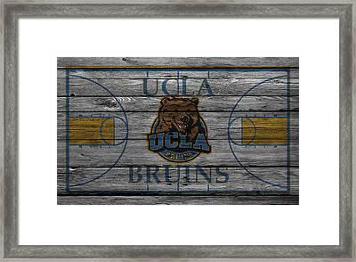 Ucla Bruins Framed Print by Joe Hamilton