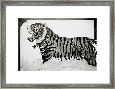 The Tiger Framed Print by Shaun Higson