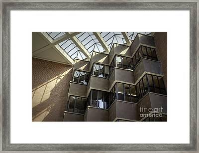 Uf Marston Science Library Accordian Window Wall Framed Print by Lynn Palmer