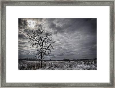 Ufo... Framed Print