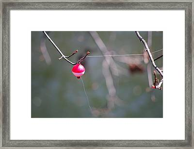 Framed Print featuring the photograph Ughh by Greg Graham