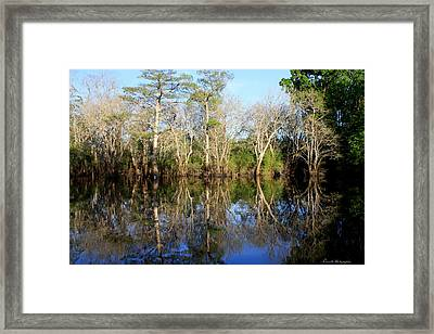 Ultimate Reflection Framed Print