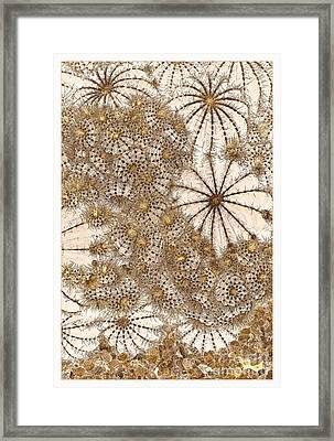 Umbrellas And Urchins Framed Print by Liz  Alderdice