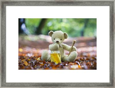 Ummmm Honey  Framed Print