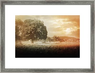 Un Jour Dans La Memoire Framed Print