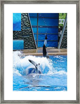 Framed Print featuring the photograph Unbelievable by David Nicholls