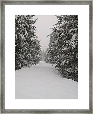 Framed Print featuring the photograph Unbroken Trail by Jewel Hengen