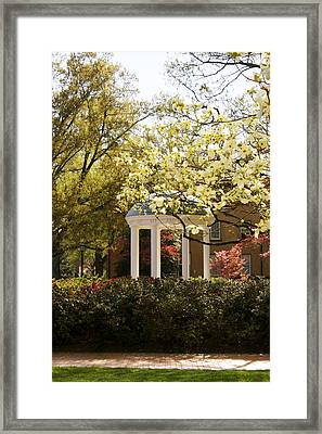 Unc-ch Old Well And Dogwoods Framed Print