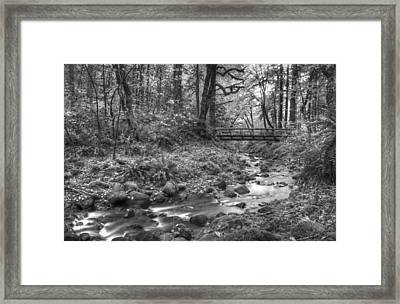 Uncolored Framed Print