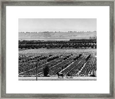 Uncompahgre Valley Farm Framed Print