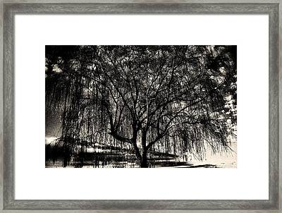 Unconnected Framed Print by Jessica Shelton