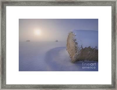 Under A Blanket Of Snow Framed Print