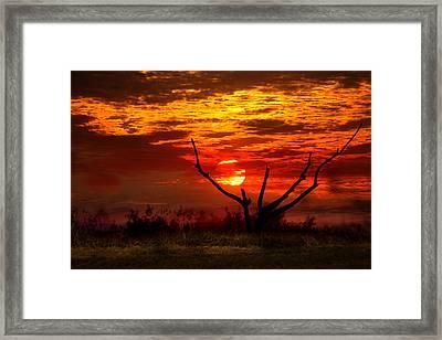 Under A Mackerel Sky Framed Print by Mark Andrew Thomas