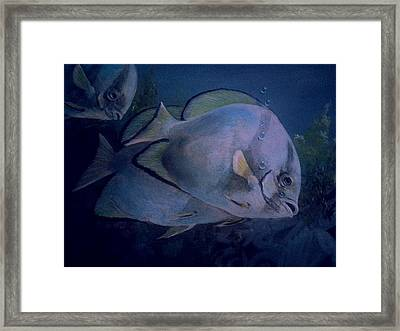 Under Blue. Framed Print by Ruben  Llano