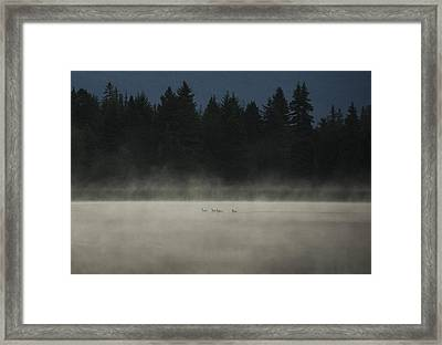 Under Cover Framed Print by Aaron Bedell