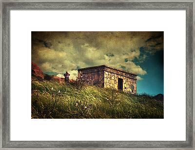 Under Dreamskies Framed Print