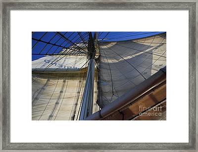 Under Flag Framed Print