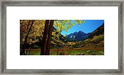 Under Golden Trees Framed Print