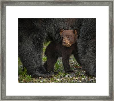 Under Mom Framed Print