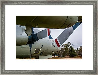 Under My Wing Framed Print by Guy Whiteley