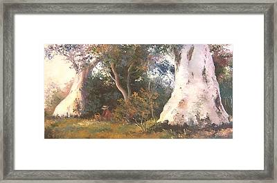 Under The Ancient Gum Tees Framed Print by Jan Matson