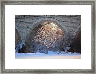Framed Print featuring the photograph Under The Bridge by Viviana  Nadowski
