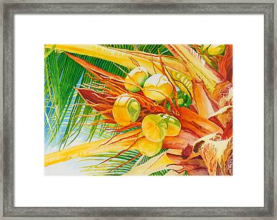 Under The Coconut Palm Framed Print by Janis Grau
