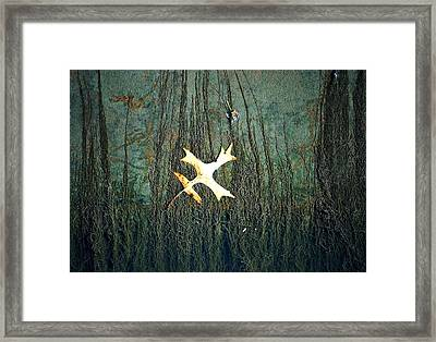 Under The Current Framed Print by Lisa Plymell