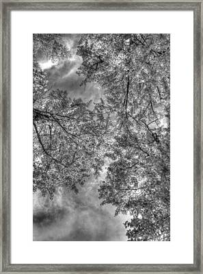 Framed Print featuring the photograph Under The Gray  by Kevin Bone