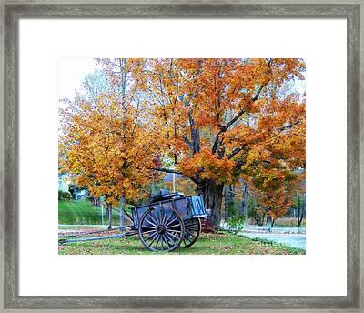 Under The Maple Tree Framed Print