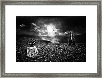Under The Moonlight Framed Print by Sabine Peters