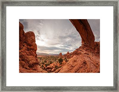Framed Print featuring the photograph Under The North Window by Dan Mihai