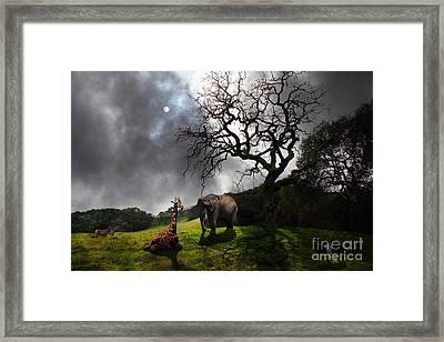 Under The Old Oak Tree - 5d21097 - Horizontal Framed Print