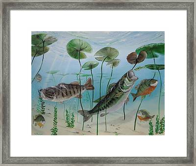 Under The Pads Framed Print