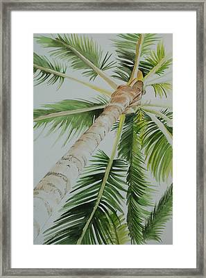 Under The Palm Framed Print