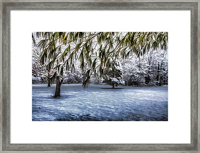 Under The Pines Framed Print